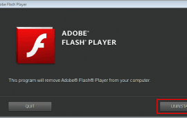 Adobe Flash Player: Update and Removal