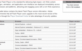 How can I see which Flash Player version is installed?